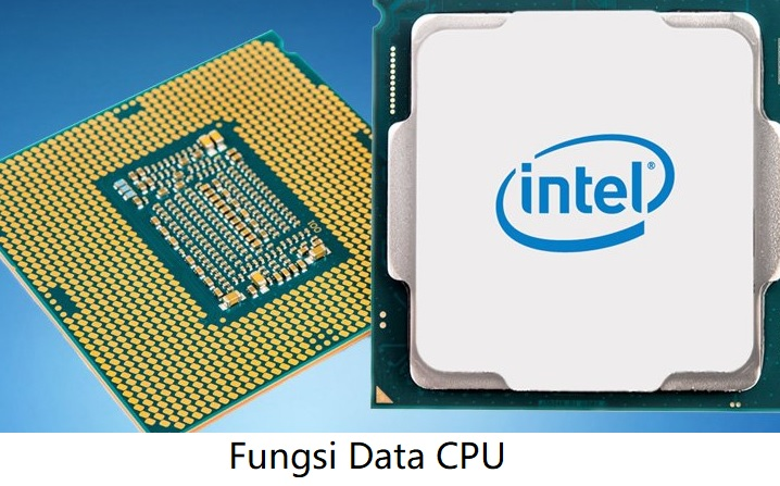 Fungsi Data CPU