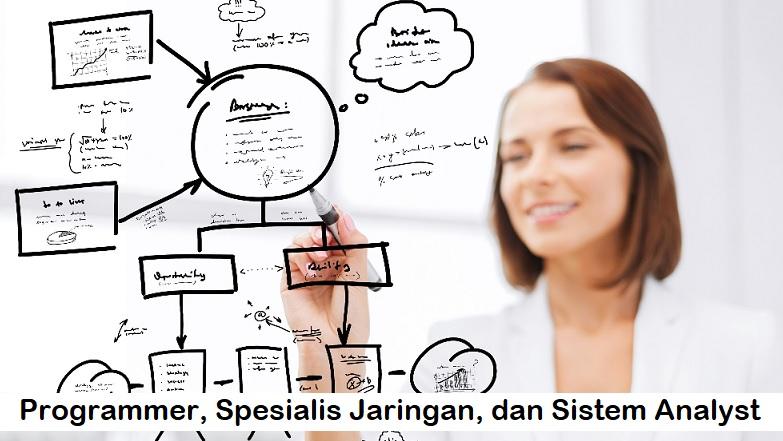 Programmer, Spesialis Jaringan, dan Sistem Analyst