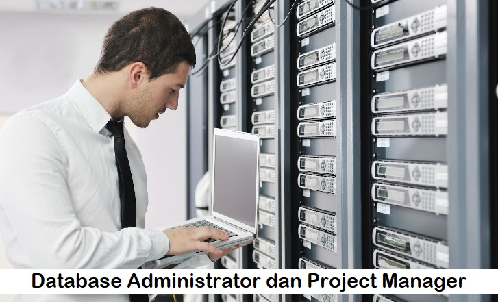 Database Administrator dan Project Manager